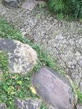 Картина конспекта paver сада Стоковое Фото