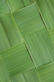 Картина конца-вверх раскосная сплетенных листьев травы стоковые изображения