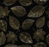 Картина концепции листового золота осени падения безшовная Стоковое Изображение RF