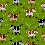 картина коровы безшовная Стоковое Изображение