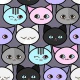 картина котов смешная безшовная Стоковое Изображение