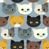 картина котов смешная безшовная Стоковое фото RF
