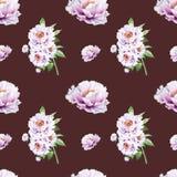 Картина красивого белого пиона безшовная E Флористическая текстура Чертеж отметки бесплатная иллюстрация