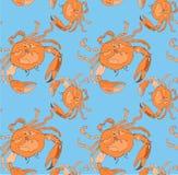 Картина красивого красочного яркого милого симпатичного моря лета вкусная очень вкусная оранжевых крабов на голубом векторе предп иллюстрация штока