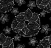 Картина красивого флористического вектора безшовная с ornamental waterlily и маргаритками Стоковые Изображения