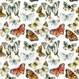 Картина красивых бабочек акварели безшовная Стоковая Фотография