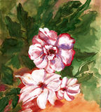 Картина красит розы букета иллюстрация вектора