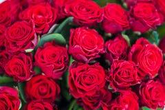Картина красных роз стоковая фотография rf