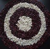 Картина круга Брайна и белых фасолей Haricot Стоковая Фотография