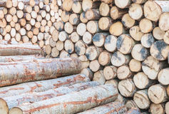 Картина крупного плана деревянная на куче старого деревянного тимберса текстурировала предпосылку Стоковое фото RF