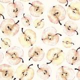 Картина куска яблока акварели безшовная Стоковая Фотография