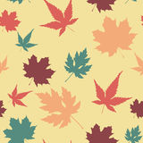 Картина кленового листа безшовная Стоковое Фото