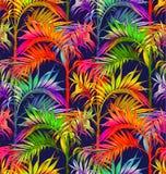 картина ладони безшовная Тропические предпосылки листьев Стоковые Изображения
