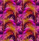 картина ладони безшовная Тропические предпосылки листьев Стоковые Фотографии RF