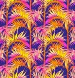 картина ладони безшовная Тропические предпосылки листьев Стоковые Изображения RF
