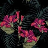 Картина лета гаваиская безшовная с цветками гибискуса и листьями ладони иллюстрация вектора