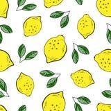 Картина лимона иллюстрация штока