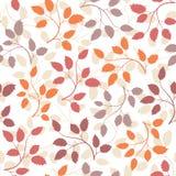 картина листьев безшовная Стоковые Изображения
