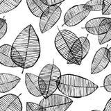 Картина листьев вектора безшовная Черная белая предпосылка сделанная с акварелью, чернилами и отметкой Ультрамодный скандинавский иллюстрация штока