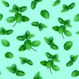 Картина листьев мяты безшовная на предпосылке teal Стоковые Изображения RF