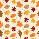 Картина 04 листьев осени безшовная стоковая фотография rf