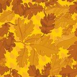 Картина листьев осени дуба. безшовная картина. Стоковое Фото