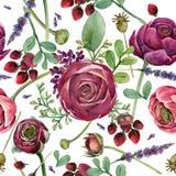 Картина лютика цветка безшовная Состав акварели флористический Стоковые Фотографии RF