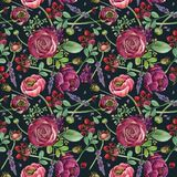 Картина лютика цветка безшовная Состав акварели флористический Стоковое Изображение RF