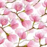 Картина магнолии акварели весны безшовная Дизайн нарисованный рукой для ткани, печати, упаковочной бумаги Стоковые Фотографии RF
