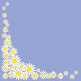 Картина маргариток на предпосылке иллюстрация вектора