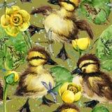 Картина милых маленьких утят безшовная Стоковые Изображения RF