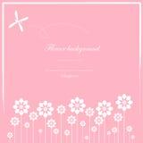 Картина милой карточки и белого цветка Стоковое Изображение
