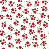 Картина милых красочных цветков вектора безшовная Стоковая Фотография RF