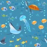 Картина морской жизни стоковая фотография