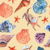 Картина морской раковины безшовная иллюстрация штока