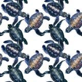 Картина морской черепахи безшовная иллюстрация морского животного акварели подводная предпосылка жизни Стоковая Фотография RF