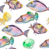 Картина моря рыбы тропические Медузы Вектор океана Стоковое фото RF