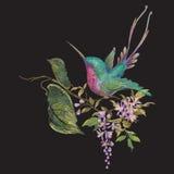 Картина моды вышивки с колибри на ветви экзотического Стоковая Фотография