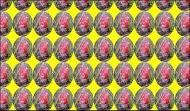 Картина ` мухомора ` Малые круглые детали стоковая фотография rf