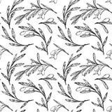 Картина нарисованная рукой безшовная - оливковые дерева сбор винограда бумаги орнамента предпосылки геометрический старый Стоковое Изображение