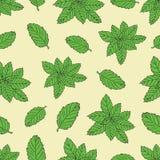 Картина нарисованная рукой безшовная с зеленым пиперментом Стоковые Фото