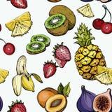 Картина нарисованная рукой безшовная с экзотическим плодоовощ лета Стоковое Изображение RF