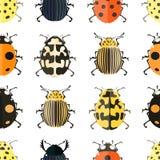 Картина насекомого безшовная Стоковая Фотография RF