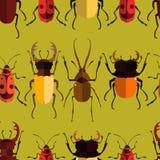 Картина насекомого безшовная Стоковые Фотографии RF