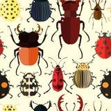 Картина насекомого безшовная Стоковая Фотография