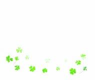 Картина на белом shamrock лист предпосылки Стоковые Фото