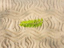 Картина на песке Стоковое Изображение RF