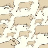 Картина овец безшовного цвета милая Предпосылка вектора ребяческая Стоковые Фотографии RF