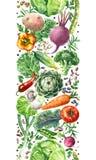 Картина овощей акварели вертикальная безшовная Стоковое Фото
