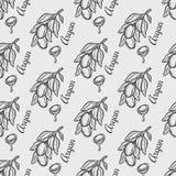 Картина орехового масла Argan безшовная Стоковая Фотография